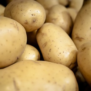 How Ireland Taught Me to Respect the Potato