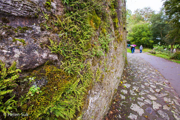 ireland travel, blarney castle