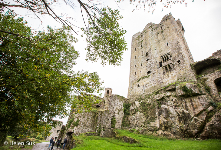 irish castles, blarney castle