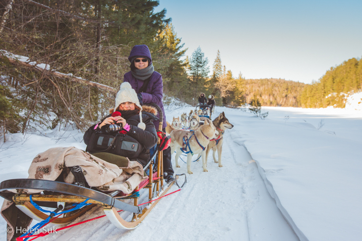 ontario dog sledding