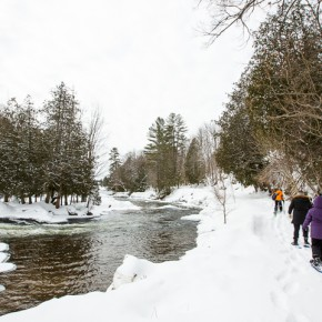 Snowshoeing Ontario: A Riverside Trail in Haliburton