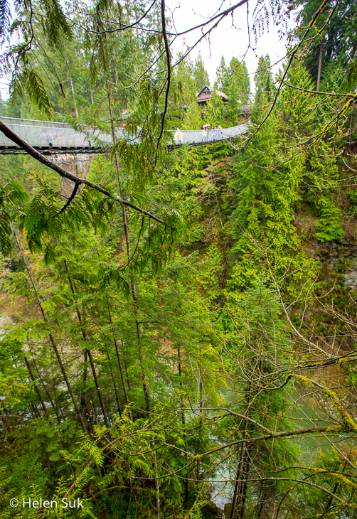 view of the suspension bridge at capilano suspension bridge park vancouver bc