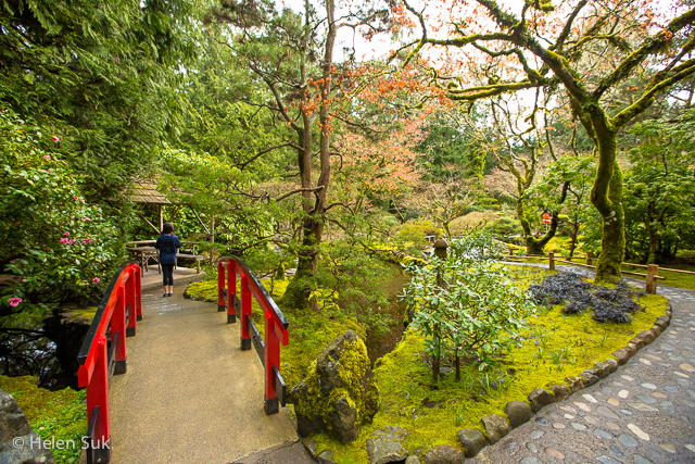 japanese garden at butchart gardens