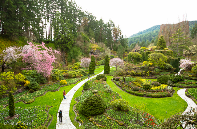 butchart gardens, what to do in victoria bc