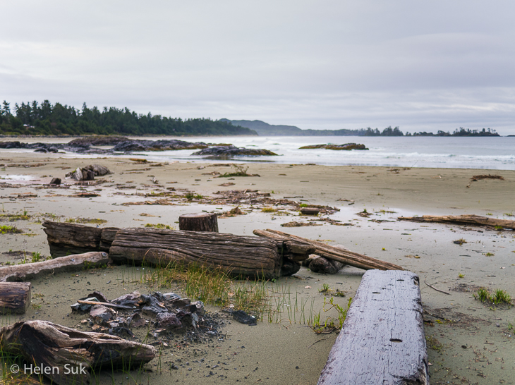 driftwood on north chesterman beach on an overcast day in tofino bc