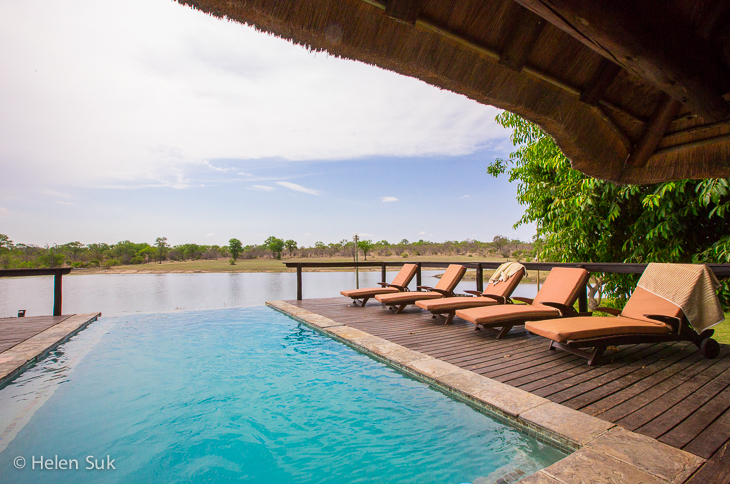 arathusa safari lodge infinity pool