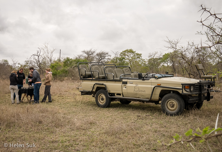 group of people on safari in south africa