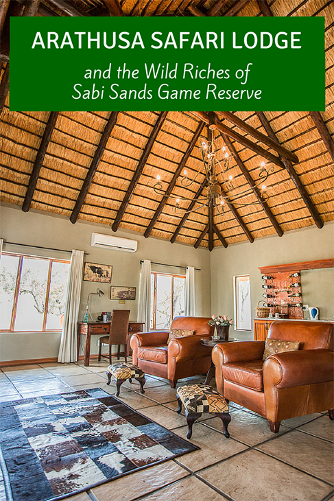 arathusa safari lodge south africa
