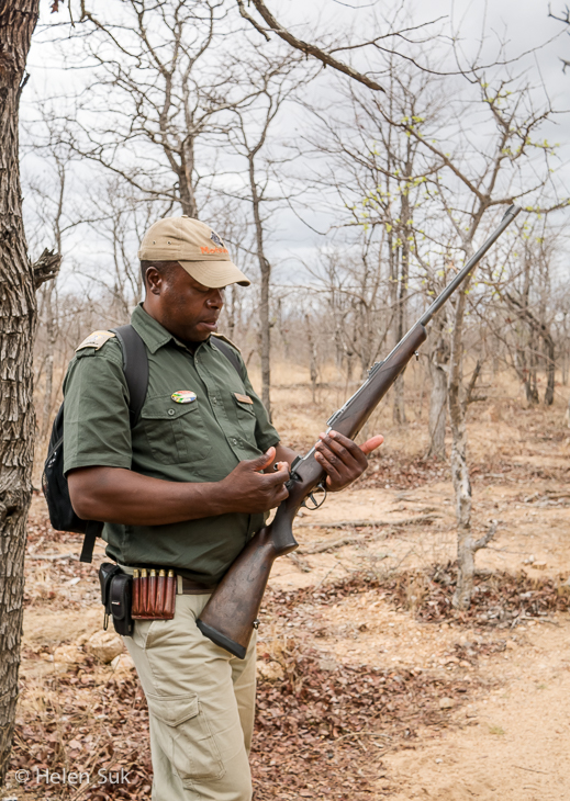 wildlife tracker with a rifle in timbavati game reserve south africa
