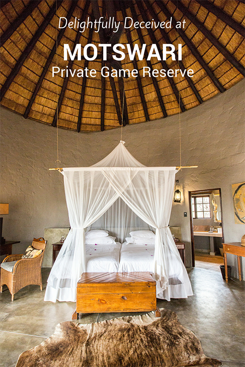 luxurious motswari private game reserve south africa