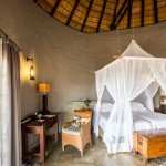 Delightfully Deceived at Motswari Private Game Reserve