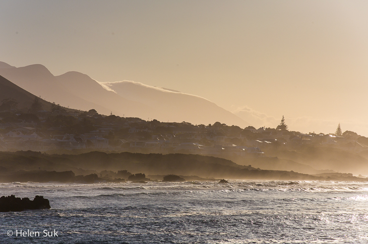 misty landscape hermanus