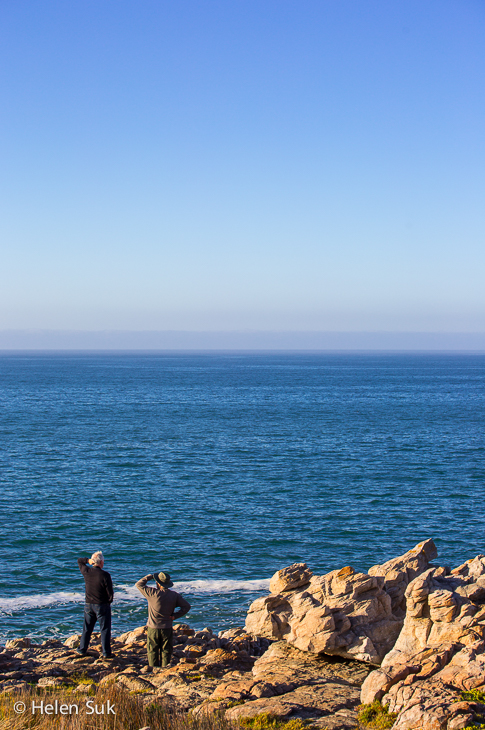 two men whale watch on the edge of the ocean in hermanus