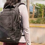 Pacsafe Anti-Theft Backpack Review: the Ultimatesafe 22L