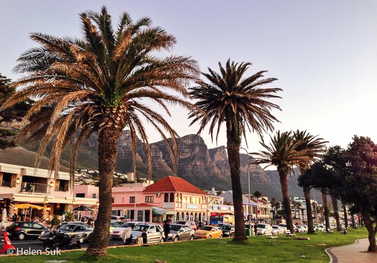main palm tree-lined strip at camps bay in cape town south africa