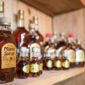 Where to Sample Maple Syrup in Toronto