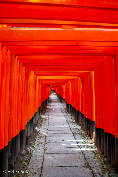 tunnel of red torii at fushimi inari shrine in kyoto japan