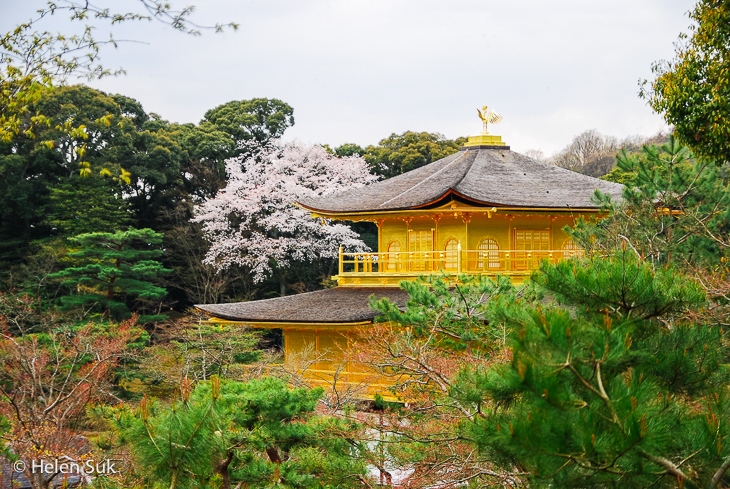 close-up of golden pavilion at kinkaku-ji