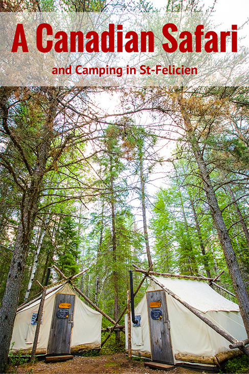 canadian safari and quebec camping in st felicien
