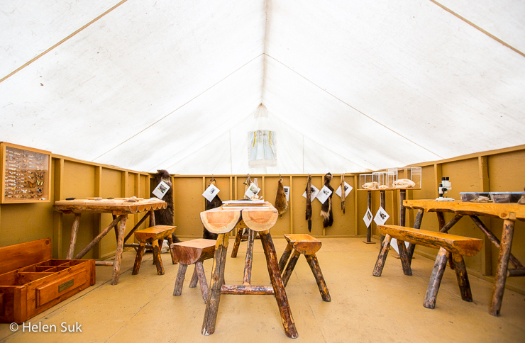 inside the lab discovery tent at the st felicien zoo