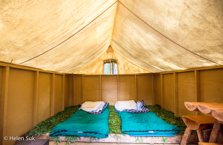 inside a tent with a bed made of pine leaves