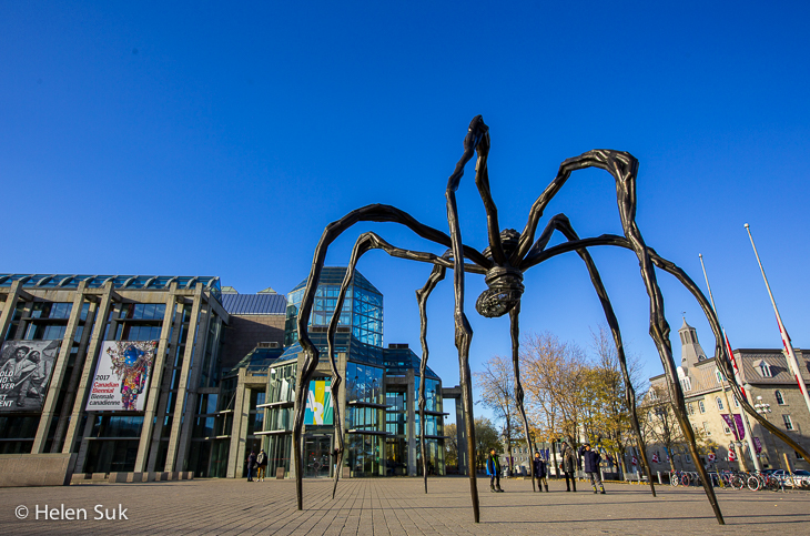 giant spider sculpture in front of the national gallery of canada