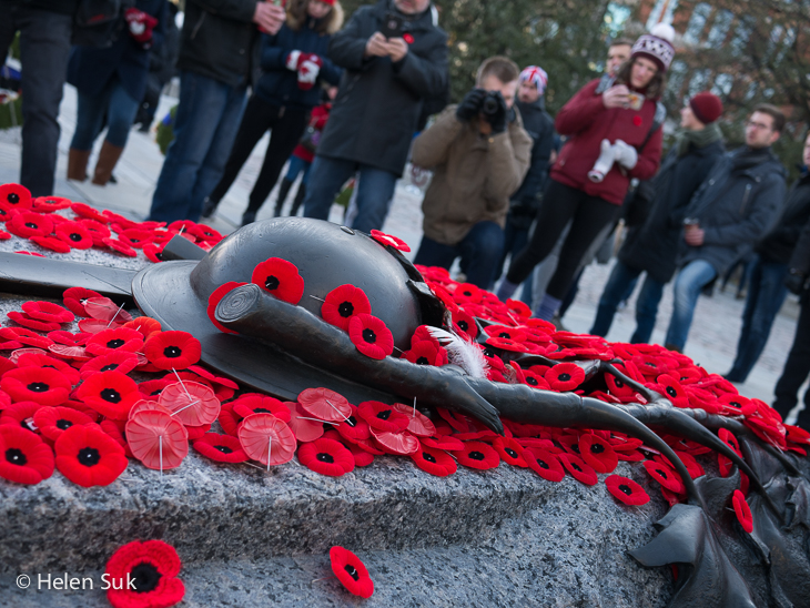 tomb of the unknown soldier in ottawa covered in red poppies