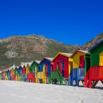 Day Trip to Muizenberg Beach, Boulders Beach and Cape of Good Hope